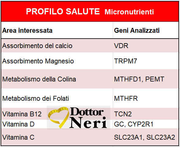 test_dieta_dna_micronutrienti_bologna